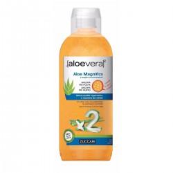 Zuccari Aloevera2 Aloe...