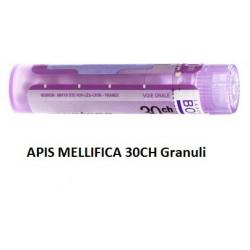 APIS MELLIFICA 30CH GR