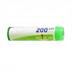 ACONITUM NAPELLUS 200CH GL
