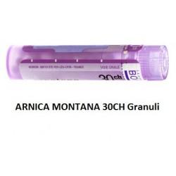 ARNICA MONTANA 30CH GR