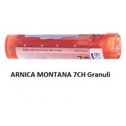 ARNICA MONTANA 7CH GR
